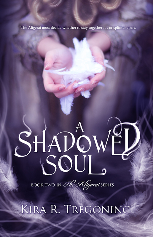 Cover art for A Shadowed Soul