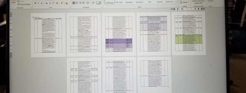 Screenshot of a Word doc with a chart and many pages