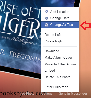 Screenshot showing a portion of a Facebook image with the Options menu selected; red arrow points to Change Alt Text.
